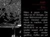 26-05-2012_pfingsttanz_back